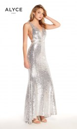 60036_Silver_front